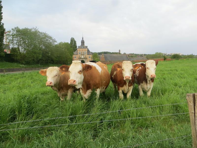 Agribusinessclub bezoekt BoerEnCompagnie in Leuven